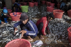 most of the seamen i asked: country? myanmar, was the answer. samut sakhon fish port; thailand, oct 2014