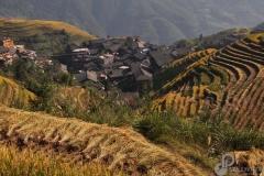 13.Rice-Terrace